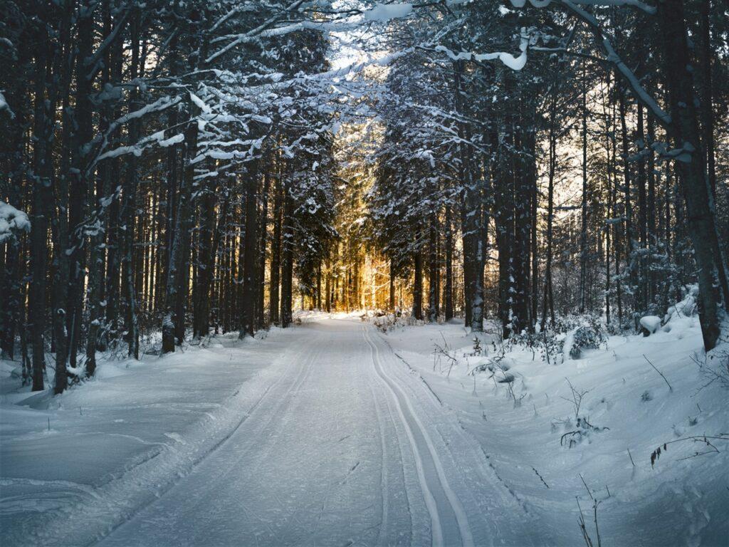 Winterkonzert